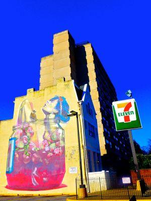 strawberry girl mural richmond va november 2014