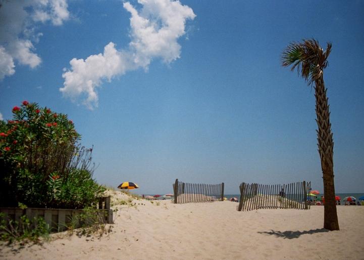 24 myrtle beach south carolina pentax k1000